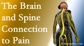 Apple Country Chiropractic looks at the connection between the brain and spine in back pain patients to better help them find pain relief.