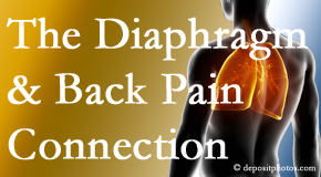Apple Country Chiropractic knows the relationship of the diaphragm to the body and spine and back pain.