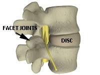 normal disc between vertebrae