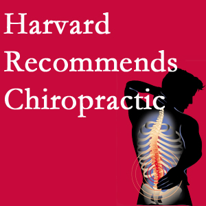 Apple Country Chiropractic offers chiropractic care like Harvard recommends.