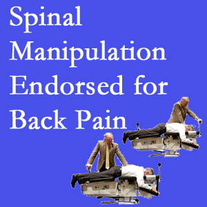 Williamson chiropractic care includes spinal manipulation, an effective,  non-invasive, non-drug approach to low back pain relief.
